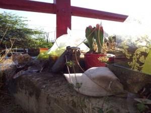 Bloemen en een pet van de Koninklijke Marine bij de brug van Mahuma, waar vorig jaar het fatale ongeluk plaatsvond waarbij twee mariniers overleden.