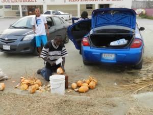 Inkomen aanvullen? Kokosnoten verkopen!