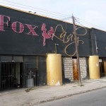Stripbar Foxy Lady