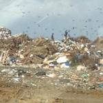 Landfill Malpais, begin januari gefotografeerd door Van de Mosselaar van Kokomo Beach