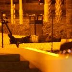Jais Juliana werd in koelen bloede doodgeschoten op de avond van 15 juli – foto: José de Bruin