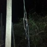 De koperdieven zijn de laatste keer weggejaagd voor ze de kabels konden meenemen (foto: Tephen de Haseth)