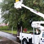 Op statia viel de stroom uit nadat een boom op een hoogspanningskabel viel - foto: Nadya van Putten