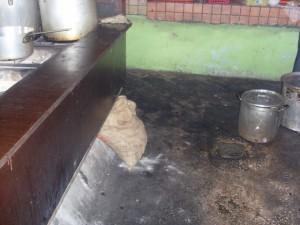 Onhygiënische toestanden in Plasa Bieu - foto: José Manuel Dias
