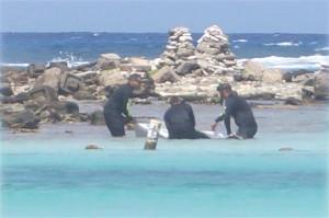 Duikers halen het lichaam van de onbekende man uit het water bij baby Beach. Foto: Awe24.com