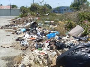 De afwezigheid van bepaalde wetten opende na 10-10-10 de weg naar de illegaliteit – foto José Manuel Dias