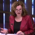 Minister van Volksgezondheid Edith Schippers tijdens het overleg over het zikavirus.