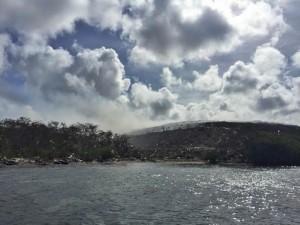 Het niemandsland tussen de vuilstortplaats van Parkietenbos en het naastgelegen mangrovebos. Foto: Ariën Rasmijn