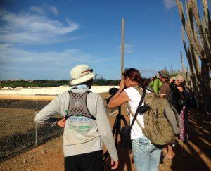 Gidsen krijgen een workshop vogels identificeren - foto: Janita Monna