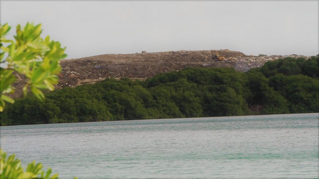De dump Parkietenbos is uitgegroeid tot een 'monster' volgens bewoners - foto: Sharina Henriquez